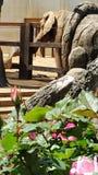 Olifant Stock Fotografie