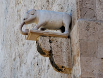 Olifant in Cagliari Cagliari royalty-vrije stock foto