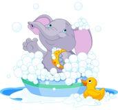 Olifant die een bad hebben Royalty-vrije Stock Afbeeldingen
