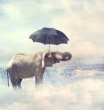 Olifant die zich op de wolken bevinden stock fotografie