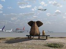 Olifant en hond bij de luchthaven Royalty-vrije Stock Foto's