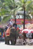 Olifant het berijden Royalty-vrije Stock Foto's