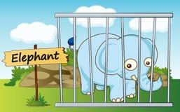Olifant in kooi Stock Foto