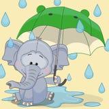 Olifant met Paraplu royalty-vrije illustratie