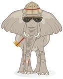 Olifant op Safari Royalty-vrije Illustratie