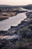 Olifant rzeka w Kruger parku narodowym Obrazy Royalty Free