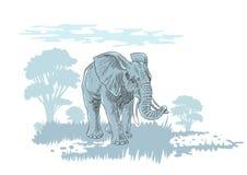 Olifant in savanne stock illustratie