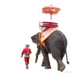 Olifant voor de reis van de toeristenrit van de oude stad in Ayutthaya royalty-vrije stock foto's