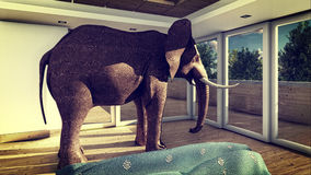 Olifant in woonkamer het 3d teruggeven Stock Afbeelding