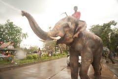 Olifanten die water in Songkran-festival in Thailand bespatten. Royalty-vrije Stock Foto