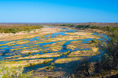 Olifants river, scenic and colorful landscape with wildlife in the Kruger National Park, famous travel destination in South Africa Stock Image