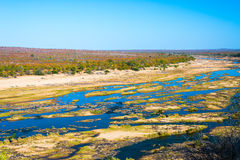 Olifants river, scenic and colorful landscape with wildlife in the Kruger National Park, famous travel destination in South Africa Stock Photography