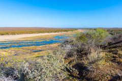 Olifants river, scenic and colorful landscape with wildlife in the Kruger National Park, famous travel destination in South Africa Royalty Free Stock Images