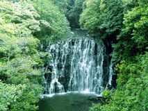Olifantsdaling, Shillong, Meghalaya Royalty-vrije Stock Foto's