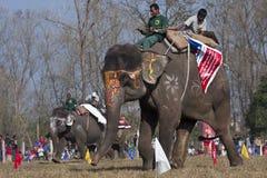Olifantsfestival, Chitwan 2013, Nepal Royalty-vrije Stock Afbeeldingen