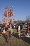 Olifantsfestival, Chitwan 2013, Nepal Stock Afbeelding