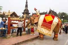 Olifantsoptocht voor Lao New Year 2014 in Luang Prabang, Laos Stock Afbeeldingen