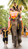 Olifantsparade Royalty-vrije Stock Afbeeldingen