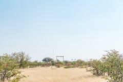 Olifantsrus休宿所的看法在埃托沙国家公园 免版税库存照片