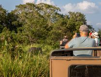 Olifantssafari in het Nationale Park van Minneriya, Sigiriya, Sri Lanka royalty-vrije stock fotografie