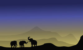 Olifantssilhouet in woestijn Royalty-vrije Stock Afbeeldingen
