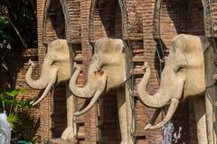 Olifantsstandbeeld in Chiangmai-Dierentuin, Thailand Stock Foto