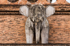 Olifantsstandbeeld, Wat-chedi luang tempel in Thailand Royalty-vrije Stock Afbeelding