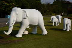 Olifantsstandbeelden Koninklijk park Rajapruek Chiang Mai Province thailand stock foto's