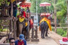 Olifantstrekking in noordelijk Thailand stock fotografie