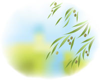 Olijfboom vector illustratie