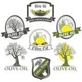 Olijfolieetiketten en ontwerpelementen Stock Afbeeldingen