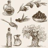 olijven Royalty-vrije Stock Afbeeldingen