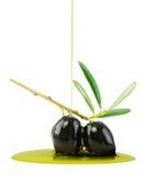Olijven en levende olie Royalty-vrije Stock Foto