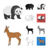Olik djurtecknad film, svart, lägenhet, monokrom, översiktssymboler i uppsättningsamlingen för design Fågel, rovdjur och herbivor royaltyfri illustrationer