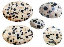 Olik dråsad naturlig mineralisk Dalmatian sten Royaltyfria Bilder