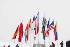 Olik flagga av världen arkivfoto