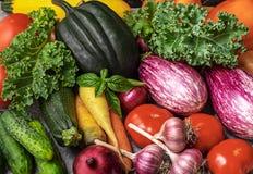 Olik grönsakcloseup arkivbild