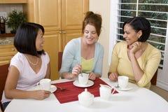 Olik grupp av kvinnan som skrattar och talar Fotografering för Bildbyråer