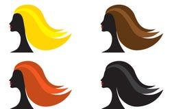 olik hårkvinna för färg Arkivfoto