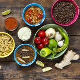 Olik indier och vegetarisk disk och mellanmål royaltyfri bild