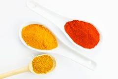 Olik kryddor och spagetti Fotografering för Bildbyråer