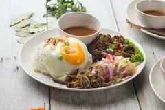 Olik malaysian ris och disk royaltyfri bild