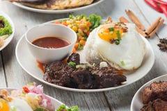 Olik malaysian ris och disk royaltyfria foton