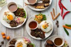 Olik malaysian ris och disk fotografering för bildbyråer