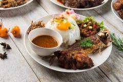Olik malaysian ris och disk royaltyfri foto