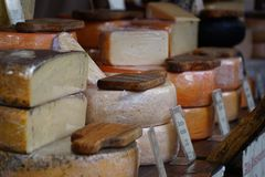 Olik ost i packar och i massa på marknadsräknare Royaltyfria Bilder