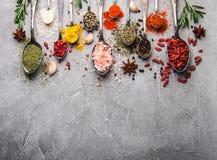 Olik sort av kryddor i tappningskedar arkivfoto