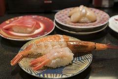 Olik sort av räkasushi i en sushistång royaltyfri fotografi