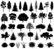 Olik träd- och buskekontur för vektor 10 eps vektor illustrationer