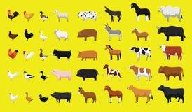 Olik uppsättning för illustration för vektor för tecknad film för sikt för sida för lantgårddjur vektor illustrationer